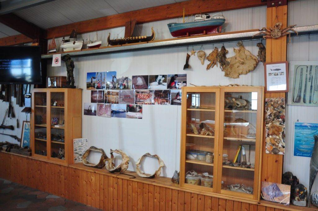 Muzeum Rekina - ekspozycja (fot. A. Zugaj)