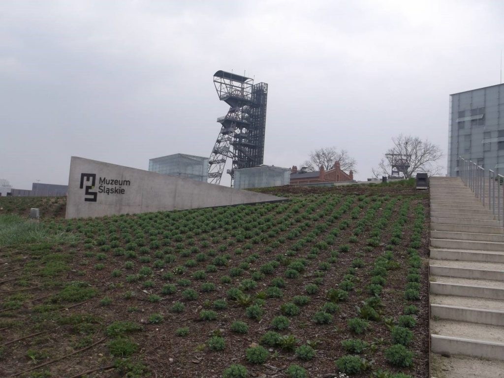 Nowa siedziba Muzeum Śląskiego widziana od strony ul. W. Roździeńskiego – jej adres to ul. T. Dobrowolskiego 1 [fot. M. Kiełbus]