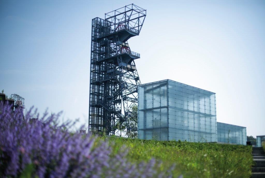Przestrzeń parkowa Muzeum Śląskiego, w tle wieża widokowa i szklane bryły doświetlające wnętrze, fot. Witalis Szołtys