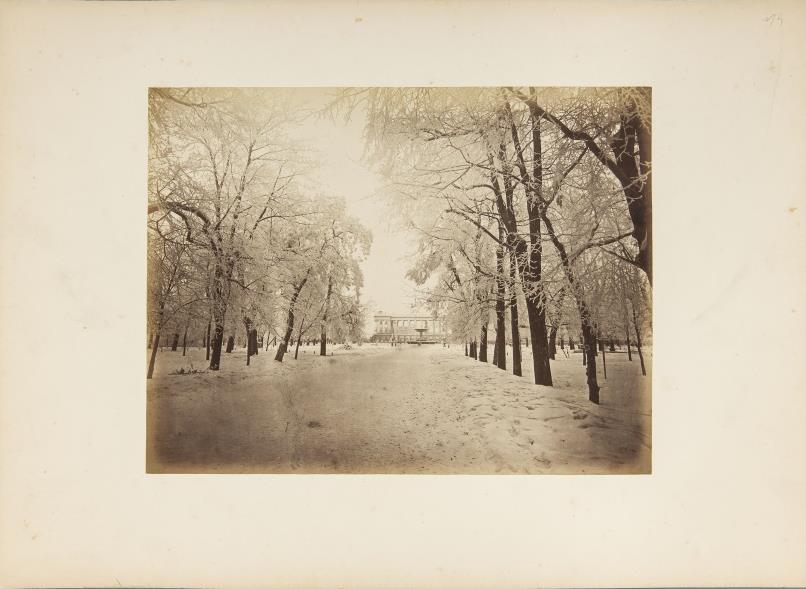 Konrad Brandel, Warszawa. Saski ogród w zimie, odbitka z negatywu szklanego, papier albuminowy, karton, ok. 1880 Zakupiony w 2014