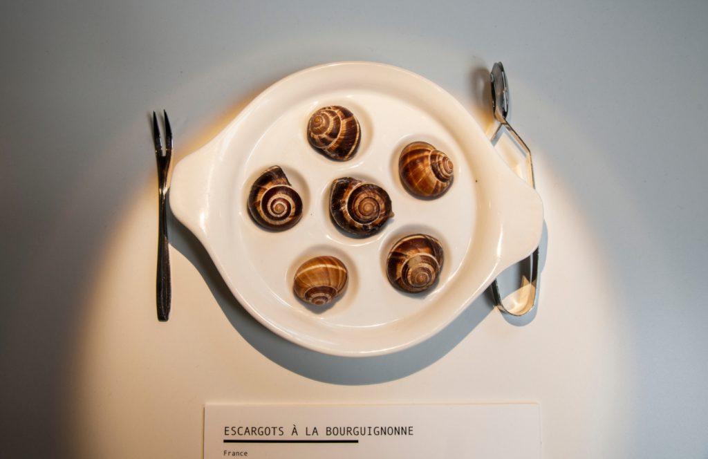 Ślimaki - Muzeum Obrzydliwego Jedzenia